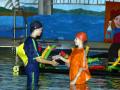 2005 Nemo 3